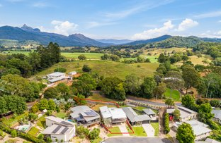 Picture of 15 GOLD LEAF CRESCENT, Murwillumbah NSW 2484