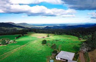 Picture of 1234 Koppin Yarratt, Comboyne NSW 2429
