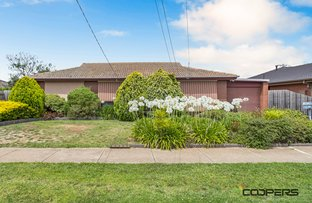 Picture of 14 Morris St, Melton South VIC 3338