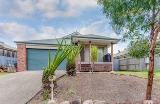 Picture of 291 Eagle Street, Collingwood Park QLD 4301