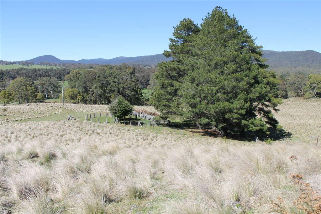 Braidwood NSW 2622, Image 2