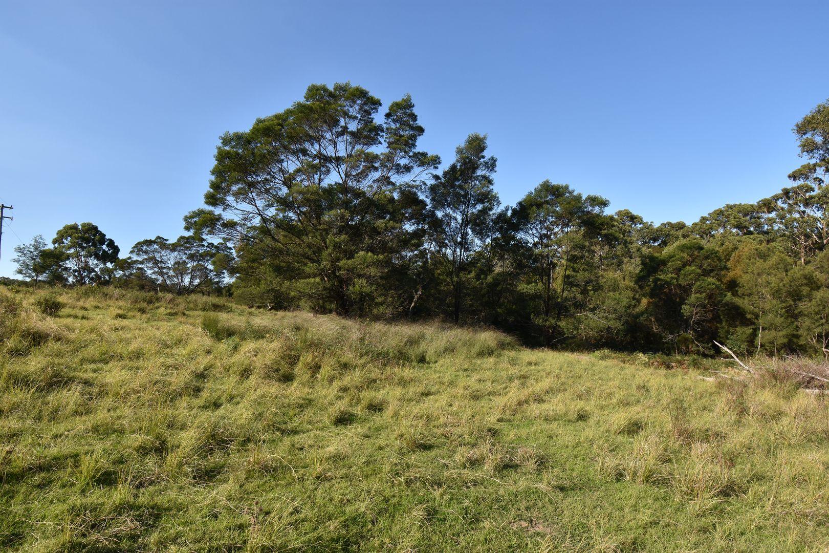 Tathra - Bermagui Road, Tanja NSW 2550, Image 2