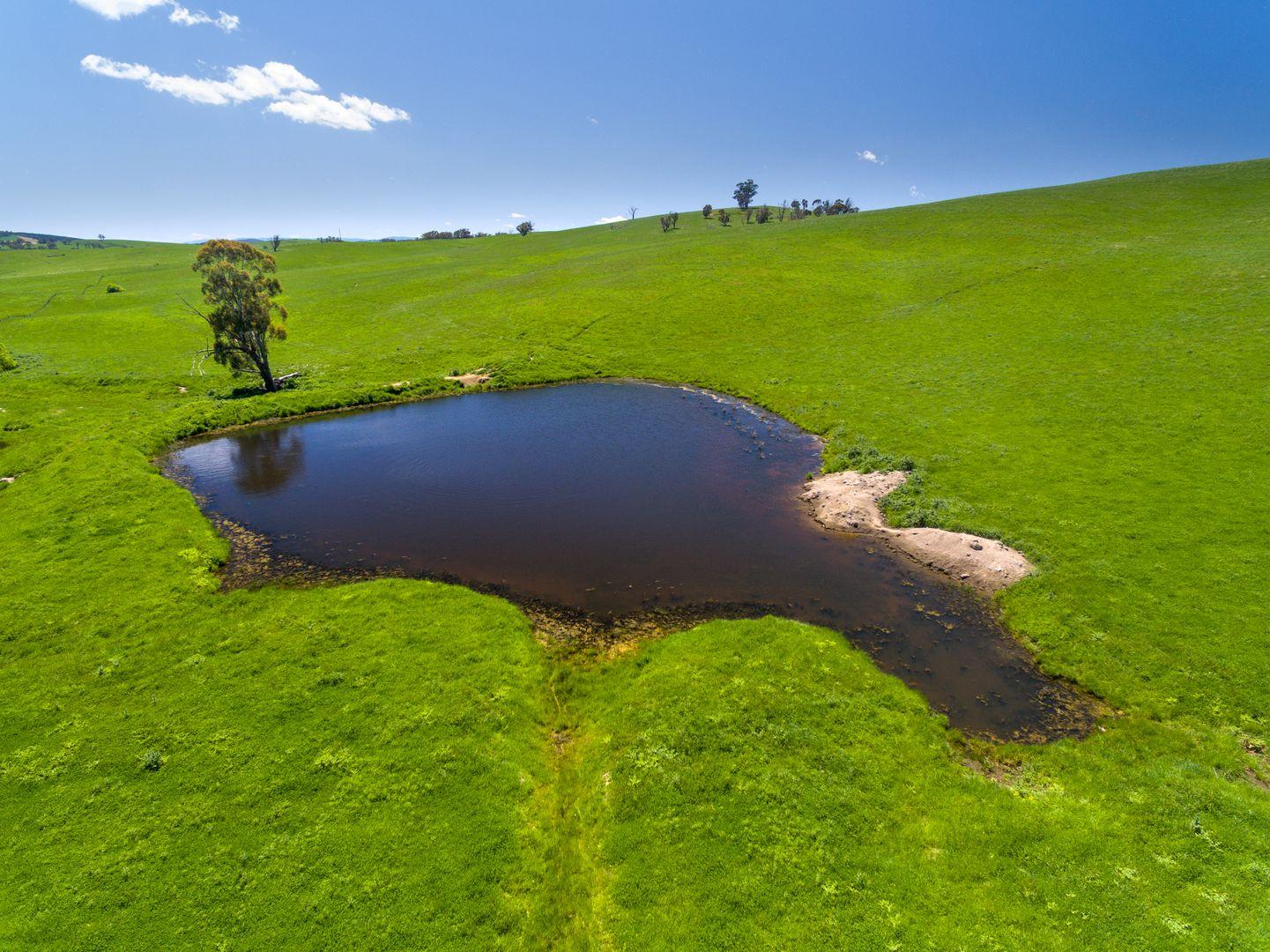 2 Langs Road, Oberon NSW 2787, Image 0