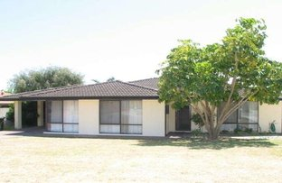 Picture of 117 Meller Road, Bibra Lake WA 6163