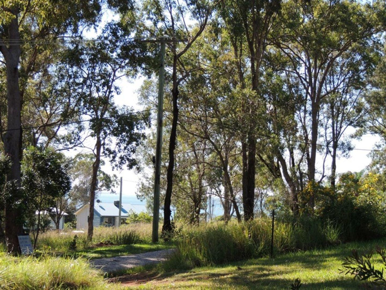 11 Pindarri Street, Lamb Island QLD 4184, Image 1