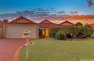 Picture of 16 Roxburgh Circle, Kinross WA 6028