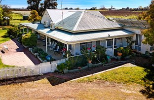 Picture of 640 Turnbull Rd, Ardmona VIC 3629