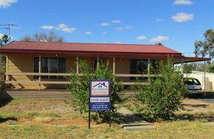 Picture of 38 Enmore St, Trangie NSW 2823