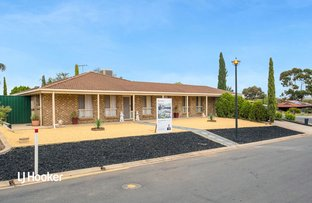 Picture of 14 Amberdale Road, Blakeview SA 5114