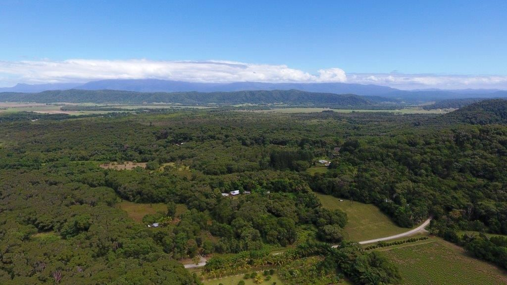 66 George Road Forest Creek, Daintree QLD 4873, Image 1