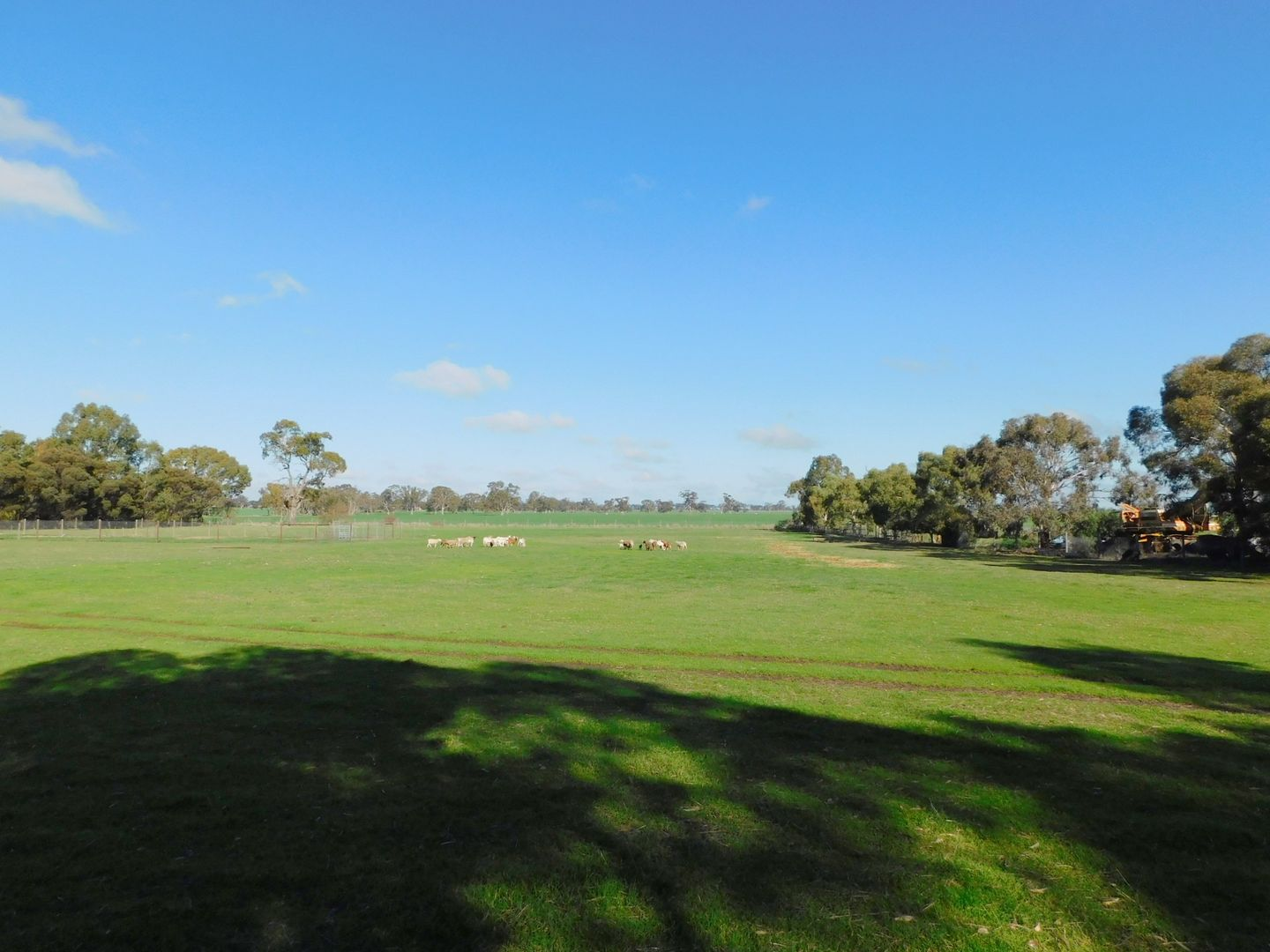 Lot 14 Oatmill Road, Bordertown SA 5268, Image 2