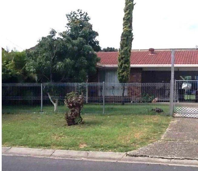 14 Cameron Street, Redbank Plains QLD 4301, Image 0