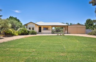 Picture of 4 Pine Road, Gol Gol NSW 2738