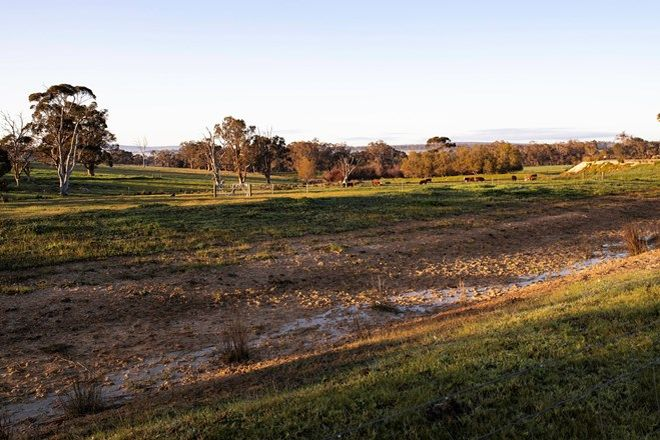 Picture of Lot 1020 Carbarup Road, KENDENUP WA 6323
