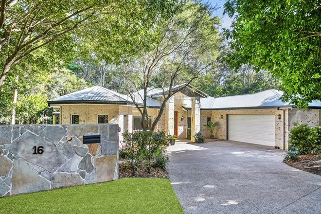 Picture of 16 Flame Tree Court, PALMWOODS QLD 4555