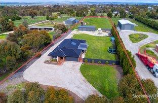 Picture of 136 Geelong Road, Bannockburn VIC 3331