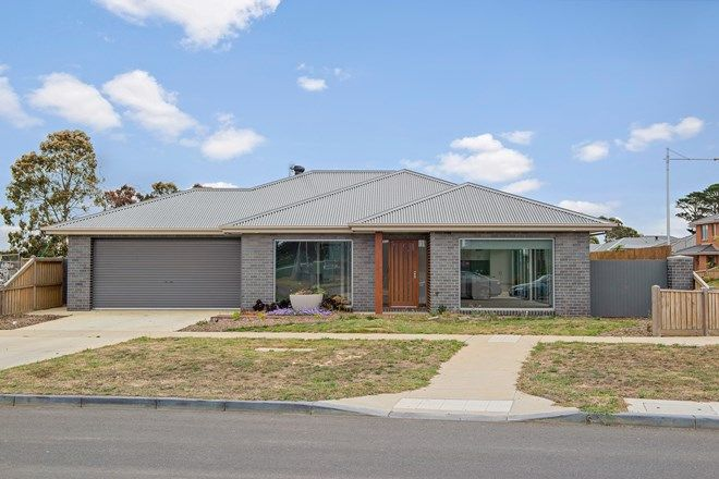 Picture of 41 Prince of Wales Boulevard, ALFREDTON VIC 3350