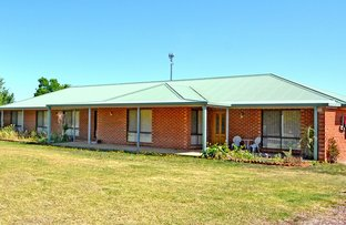 400 Petersham Rd, Leeton NSW 2705