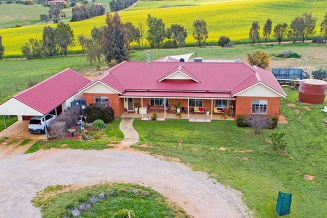Picture of 61 Tathra Dr, JUNEE NSW 2663