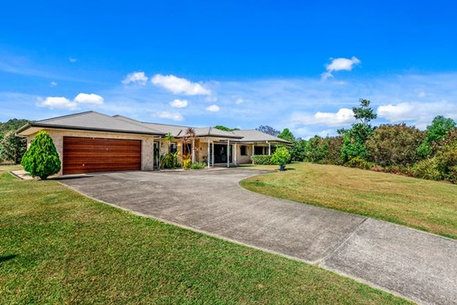 Picture of 48 BOOYONG PLACE, NOBBYS CREEK NSW 2484
