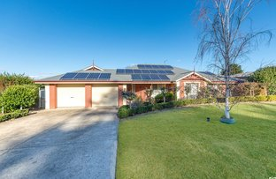 Picture of 25 Silverwood Drive, Mount Barker SA 5251