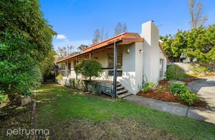 Picture of 14 Castlereagh Court, Lenah Valley TAS 7008