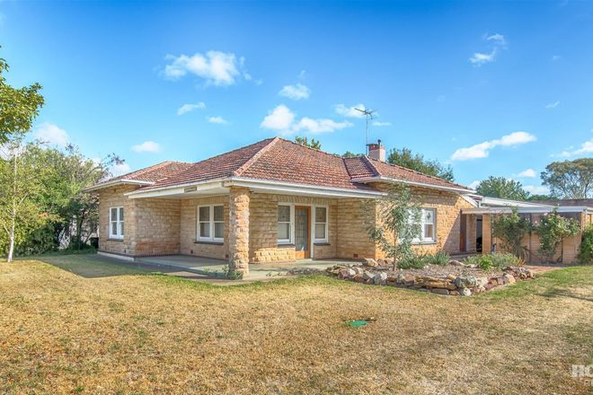 Picture of 19 Bridge Street, TANUNDA SA 5352