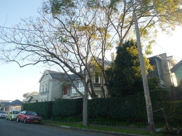 22-24 Samdon Street, Hamilton NSW 2303, Image 0