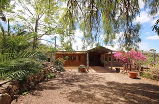 Picture of 407 Purnong Road, Mannum SA 5238