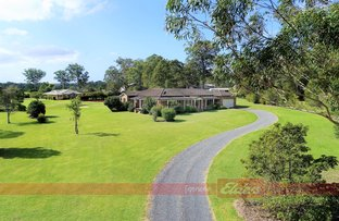 Picture of 11 Aylen Place, Darawank NSW 2428