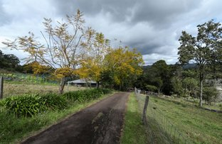 Picture of 88 Thrushs Road, Dulong QLD 4560