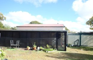 Picture of 28 snapper, Poona QLD 4650
