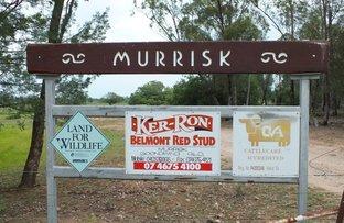 Picture of 2151 Tenomby Road, Goondiwindi QLD 4390