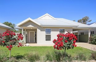 Picture of 11 Sweetwater Drive, Henty NSW 2658