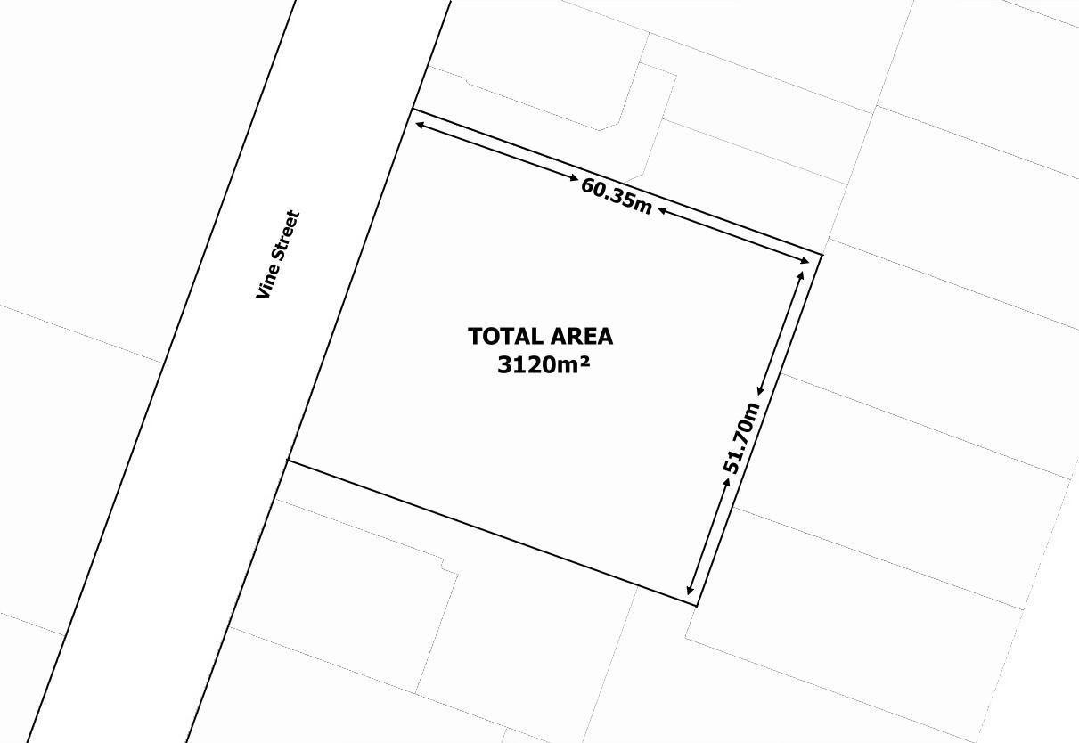12 Vine Street, Nuriootpa SA 5355, Image 0