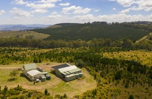 Picture of 294 Black Bullock Road, Oberon NSW 2787