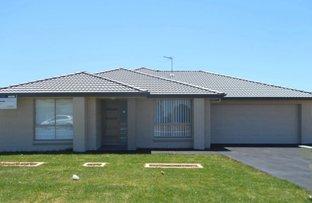 9 Peridot Street, Rutherford NSW 2320