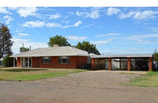 Picture of 70 South Street, Gunnedah NSW 2380