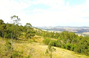 181 Heatherbrae Road, MUNNI Via, Dungog NSW 2420