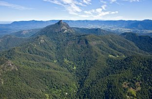 497 & 501 Mount Warning  Road, Mount Warning NSW 2484