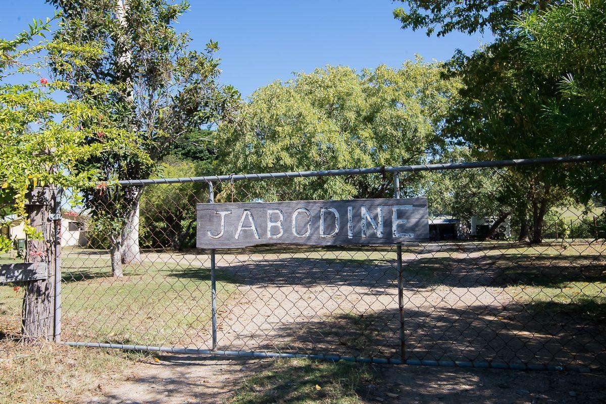 162 LARCH ROAD, Tamborine QLD 4270, Image 1