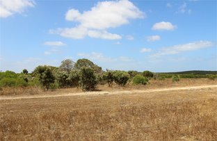 Picture of Lot 49 River Loop, Jurien Bay WA 6516