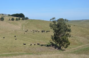 Picture of 112 HAIRS ROAD, Moyarra VIC 3951