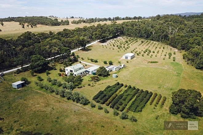 Picture of 93 Quire Rd, BUCHAN SOUTH VIC 3885