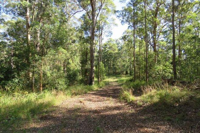 Picture of Rollans Road, BIRDWOOD NSW 2446