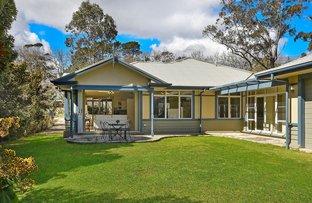 117 Falls Rd, Wentworth Falls NSW 2782