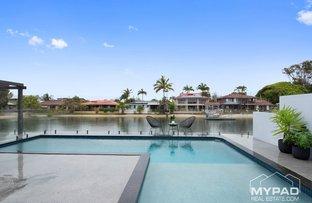 10 Swordfish Court, Palm Beach QLD 4221