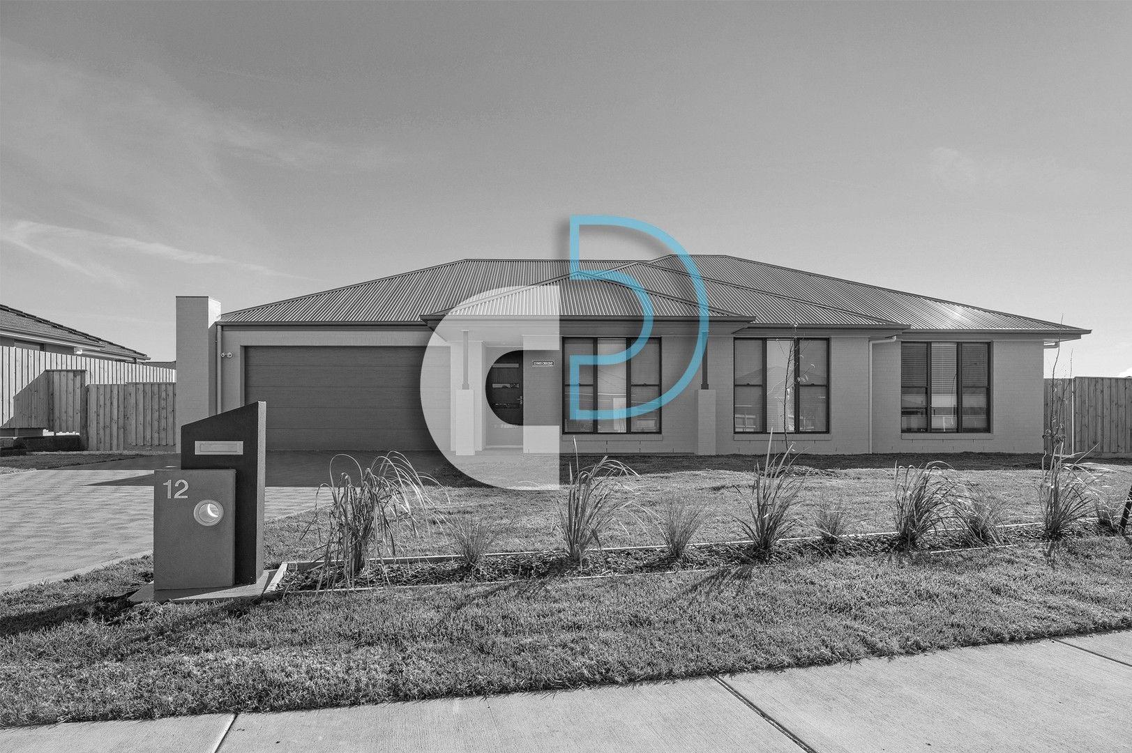 12 Mayo Crescent, Chisholm NSW 2322, Image 0