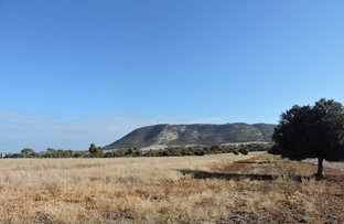 Picture of Lot 71 FORMAN ROAD, York WA 6302