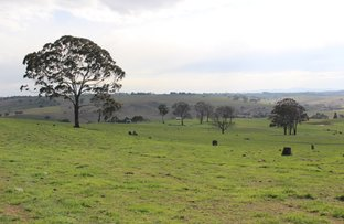 Picture of Lot 209 Browns Creek Road, Blayney NSW 2799